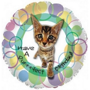 Palloncino Mylar 45 cm. R - Have a Purrfect Birthday