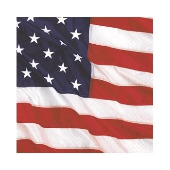 Coordinato America - Tovagliolo 25x25 cm. - 16 pz.