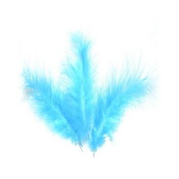Piume Azzurre