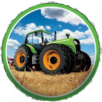 Palloncino in Lattice Rotondo 12,5 cm. Verde Scuro Metallizzato