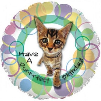 Palloncino Mylar 45 cm. Have a Purrfect Birthday